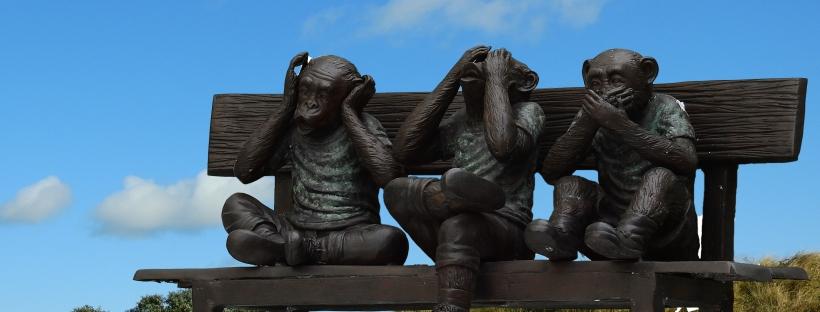 Tres micos asseguts en un banc